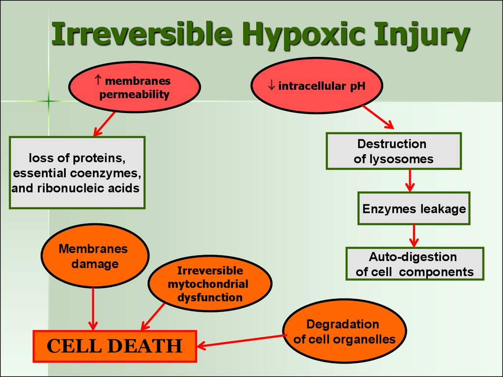 Irreversible Hypoxic Injury