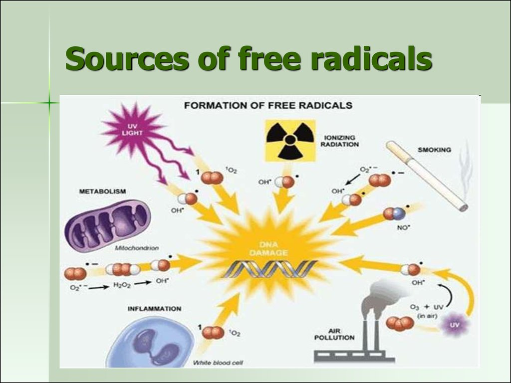 Sources of free radicals
