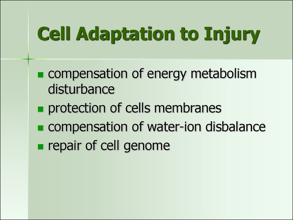 Cell Adaptation to Injury