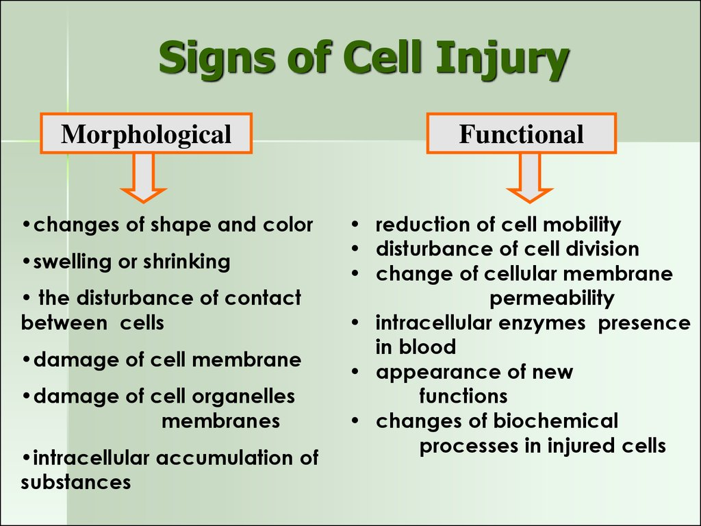 Signs of Cell Injury