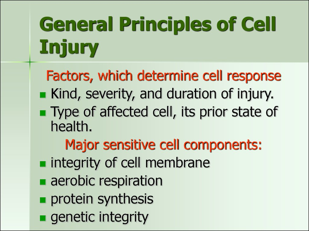 General Principles of Cell Injury