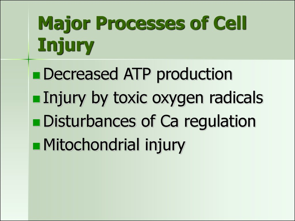 Major Processes of Cell Injury