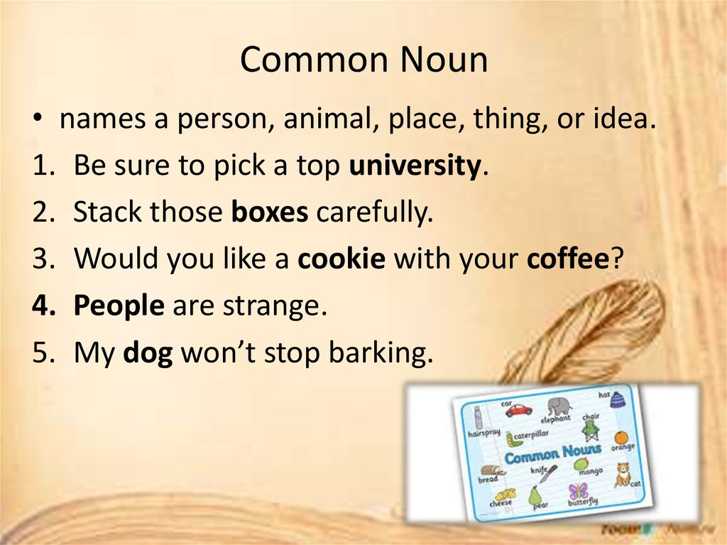 Common Noun
