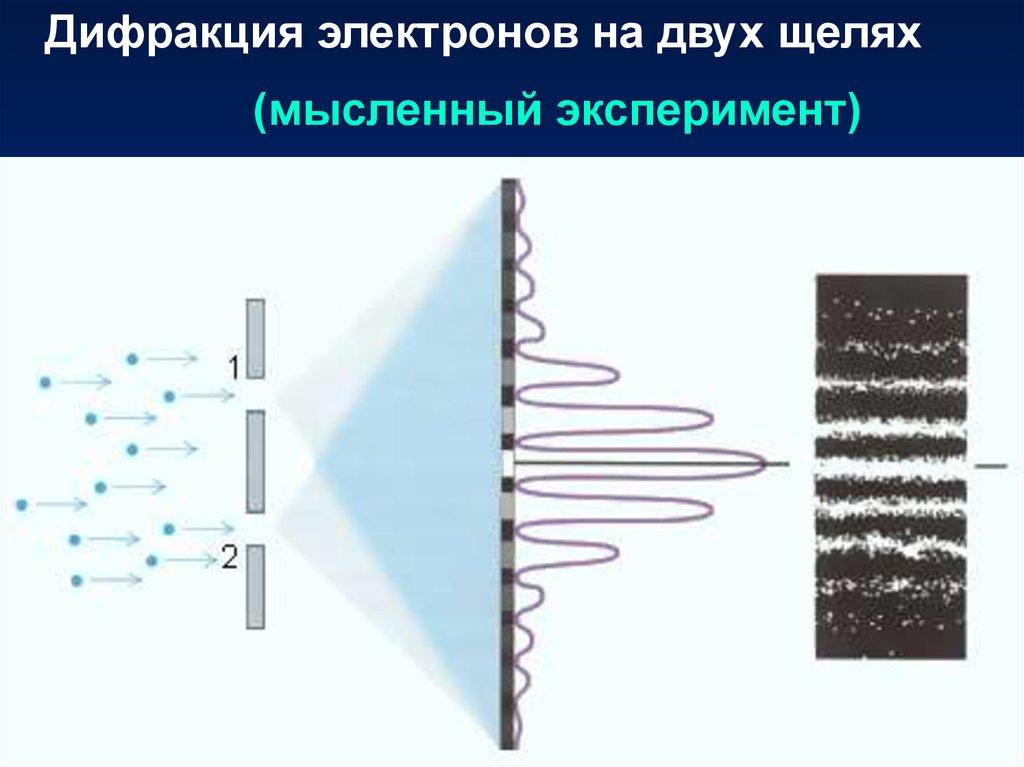 radiologische analyse des knochens bestimmung der mineralkonzentration quantitative physikalische untersuchungsmethoden 2004