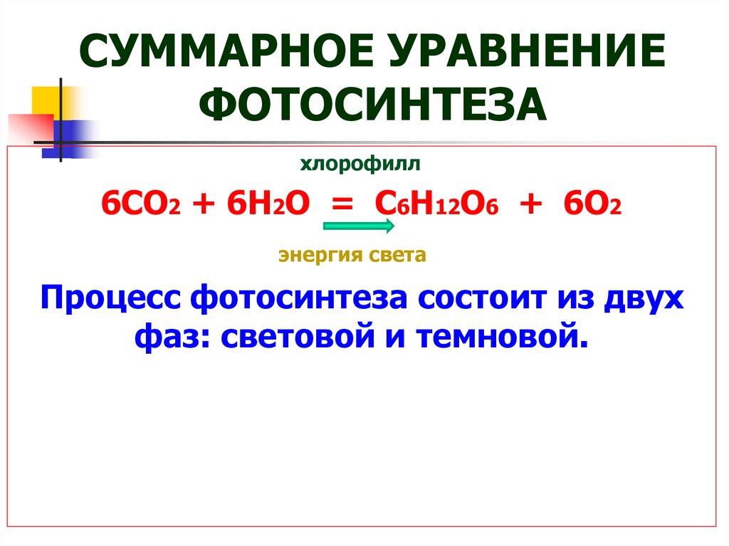 Фотосинтез углекислого газа уравнение