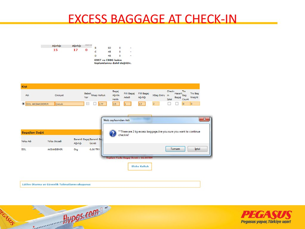 EXCESS BAGGAGE AT CHECK-IN