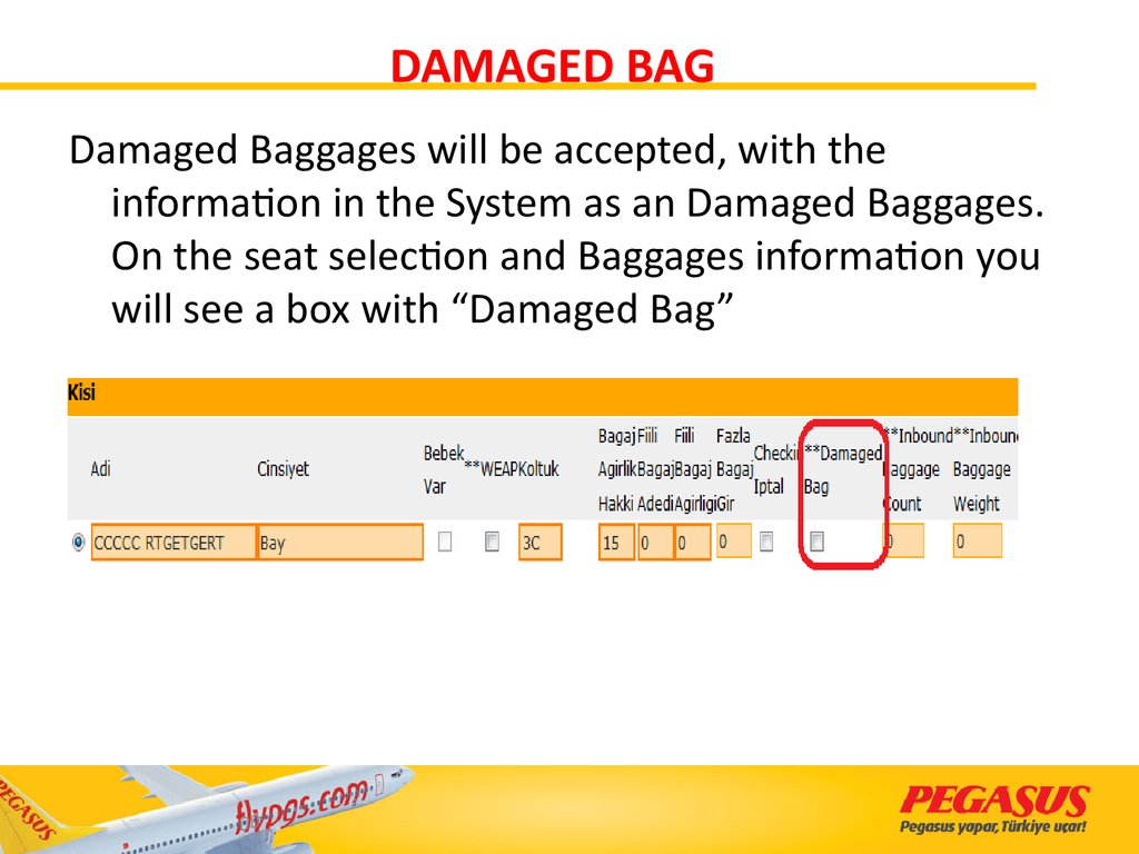 DAMAGED BAG
