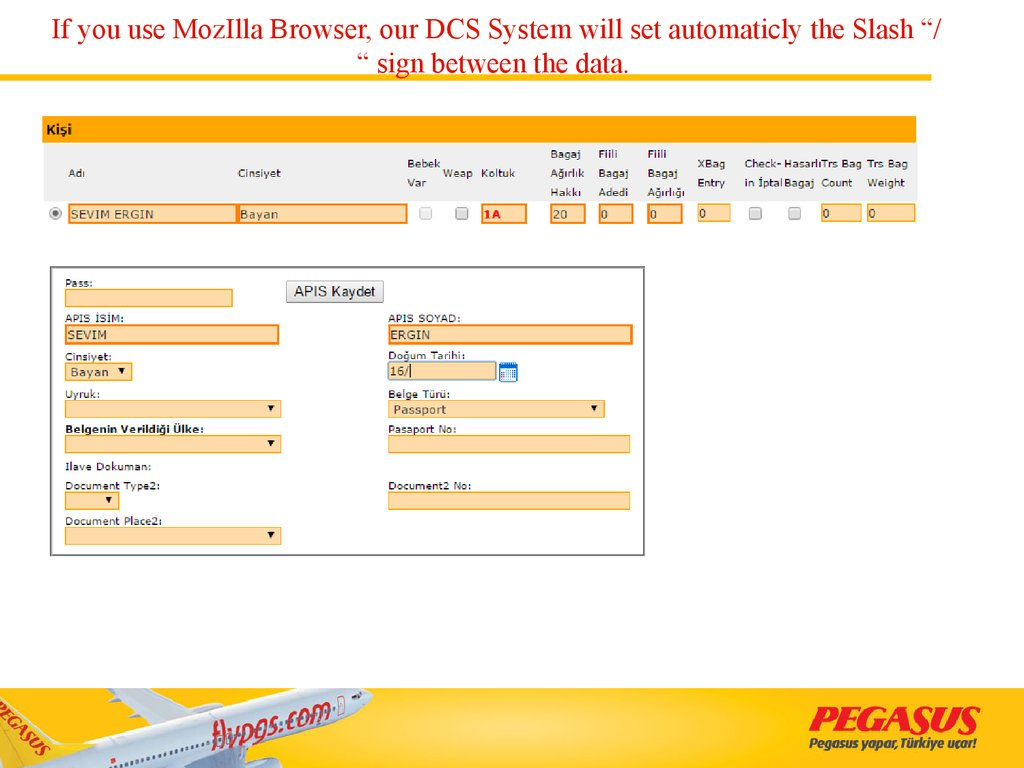 "If you use MozIlla Browser, our DCS System will set automaticly the Slash ""/ "" sign between the data."