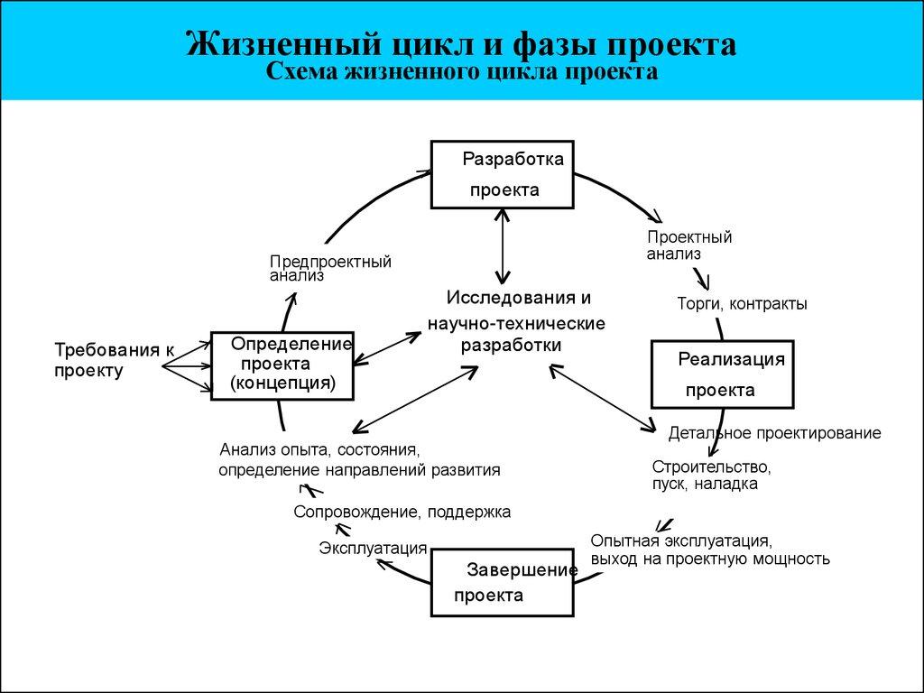 цикла бизнеса жизненного схема
