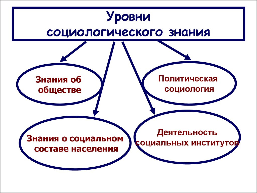 Шпаргалка Структура Социологии . Уровни Социологического Значения