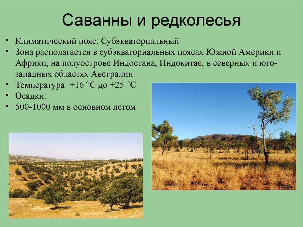 саванны пустыни и полупустыни