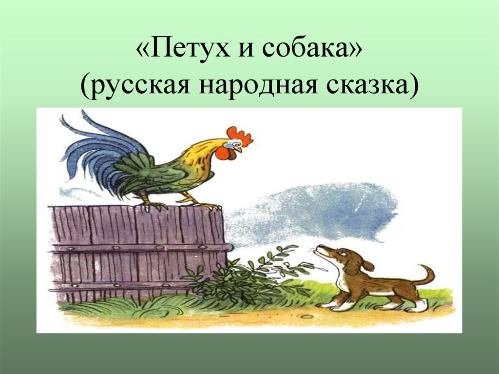 Картинки на сказку петух и собака
