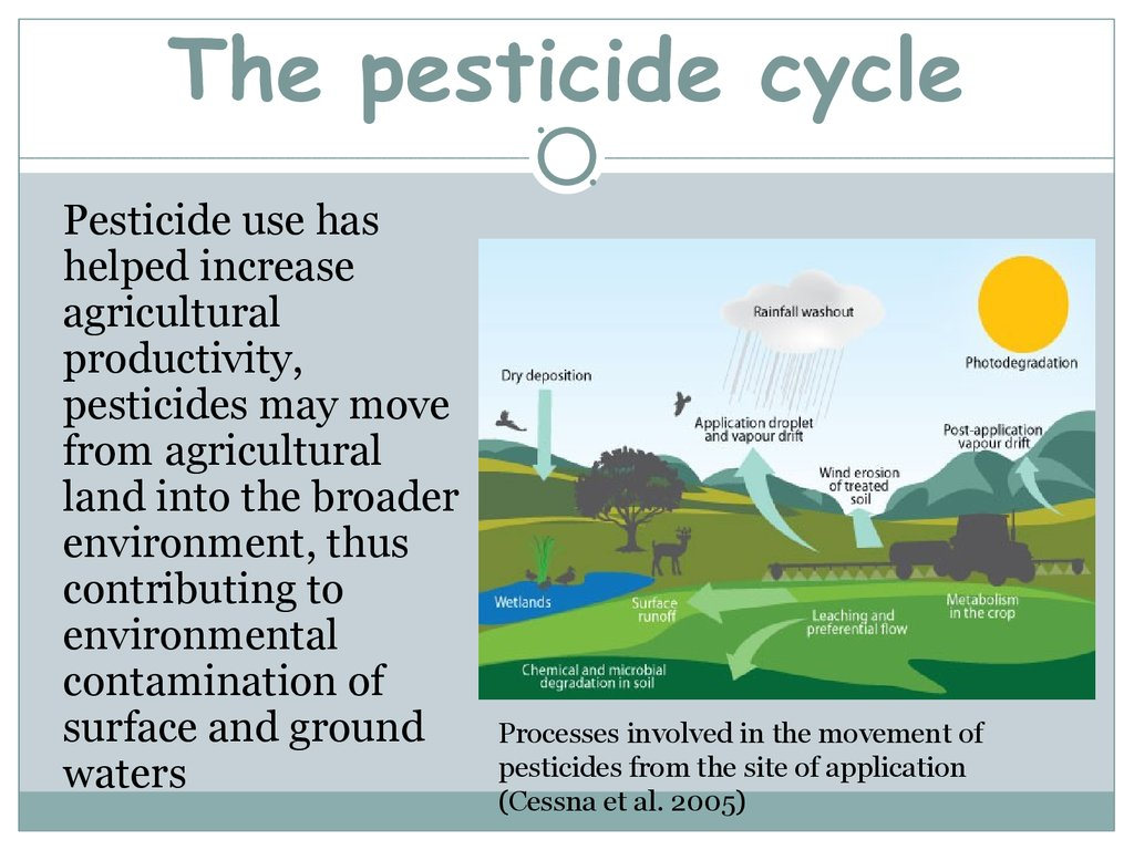 The pesticide cycle