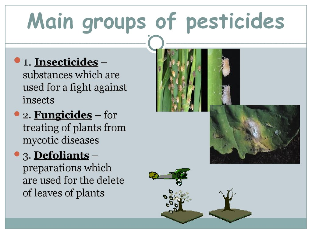 Main groups of pesticides