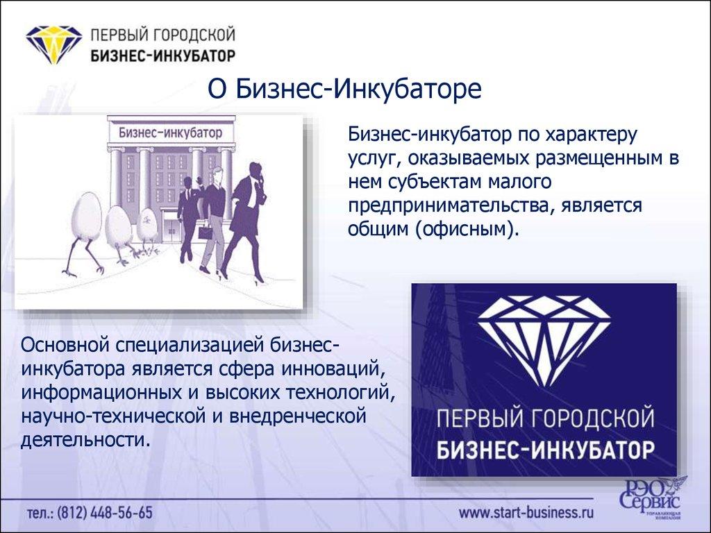 Фонд содействия кредитованию малого бизнеса санкт-петербурга