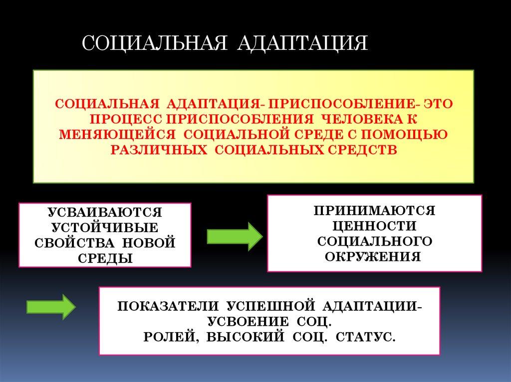 заместитель директора школы по информатизации социальная адаптация
