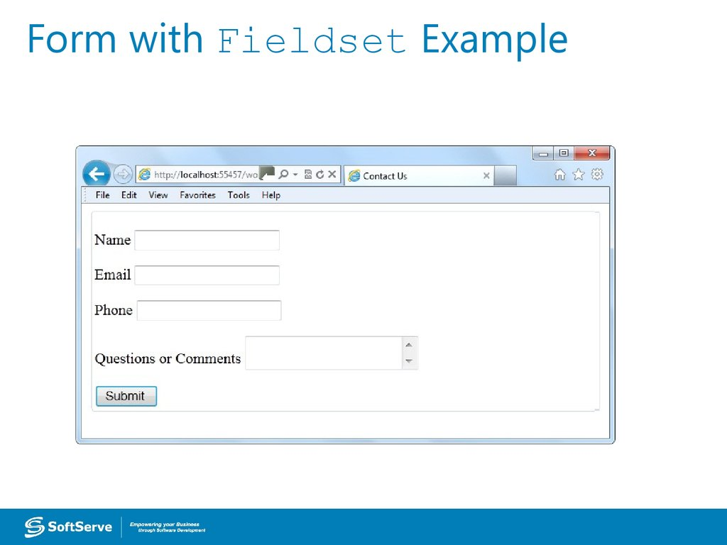 Form with Fieldset Example