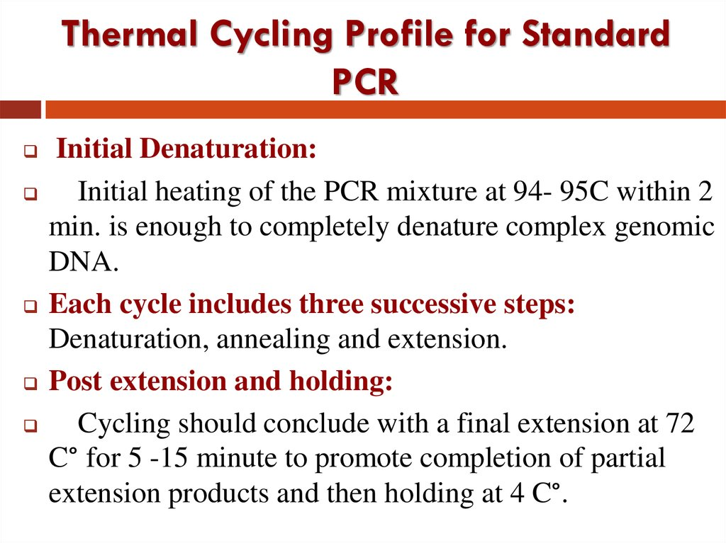 Thermal Cycling Profile for Standard PCR
