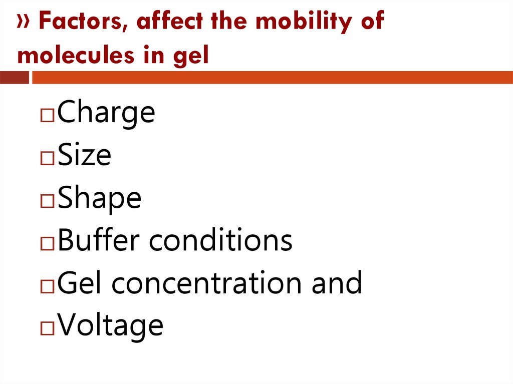 » Factors, affect the mobility of molecules in gel