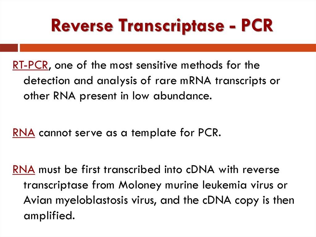 reverse transcriptase pcr