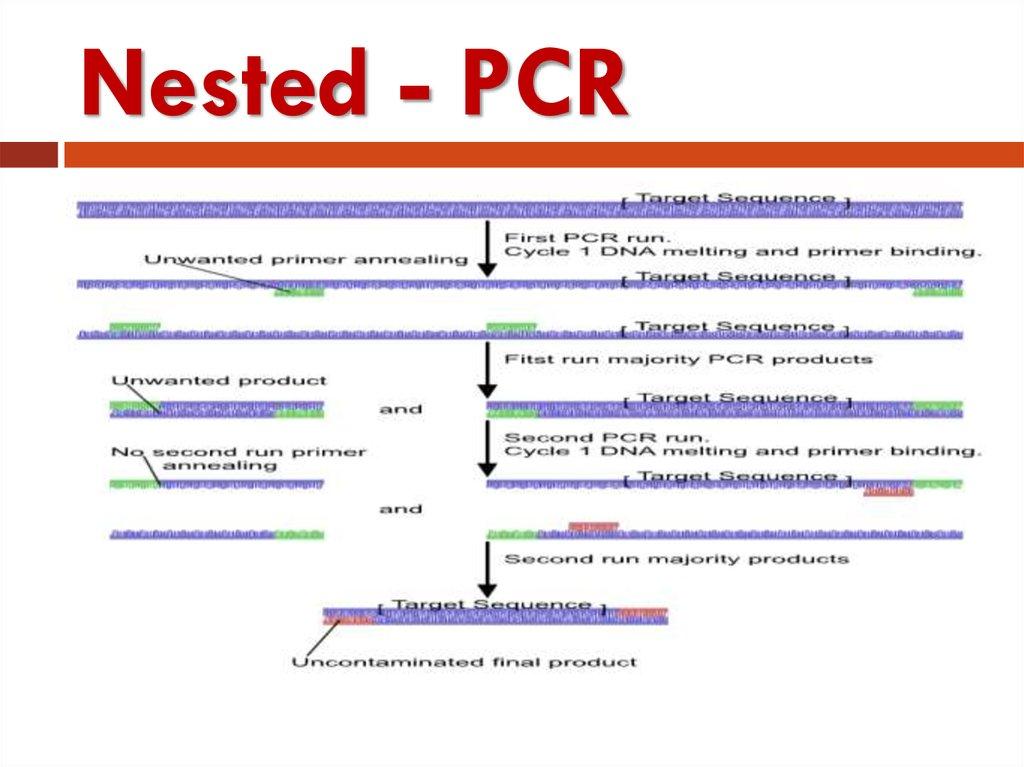 Polymerase chain reaction - презентация онлайн