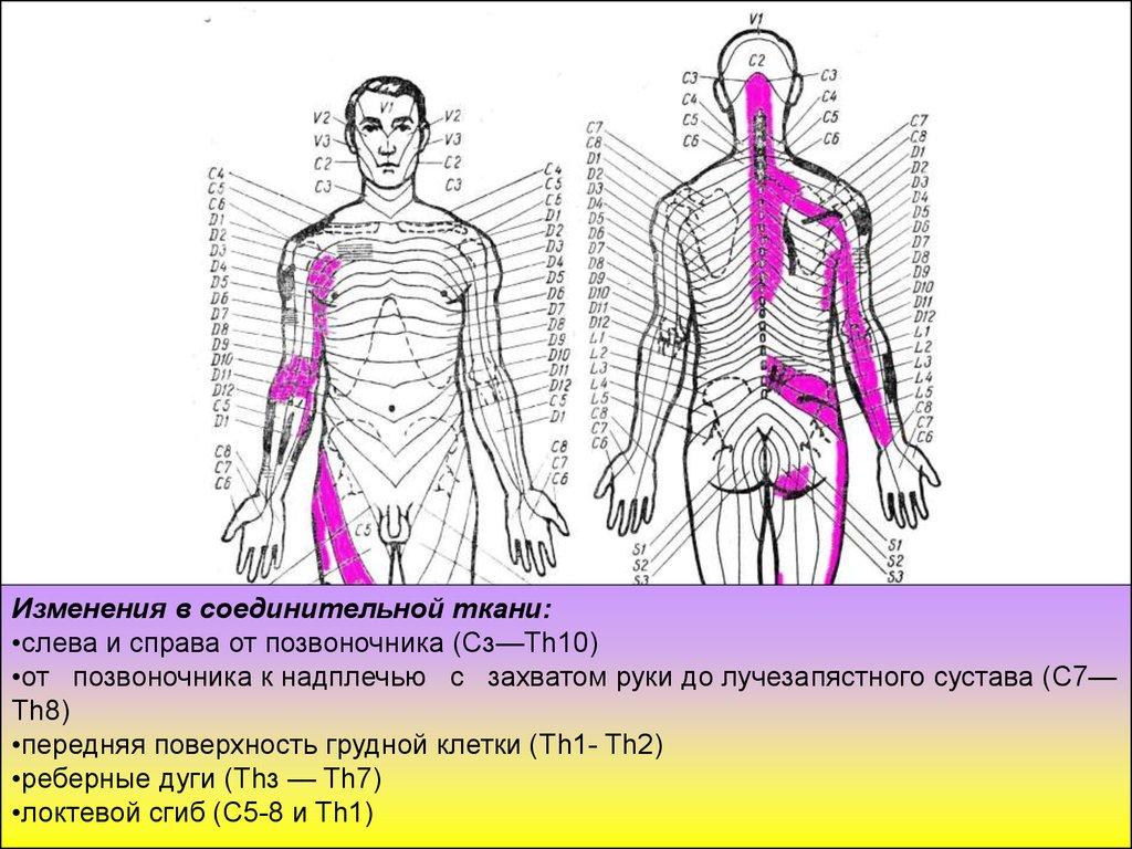 Массаж передней поверхности тела