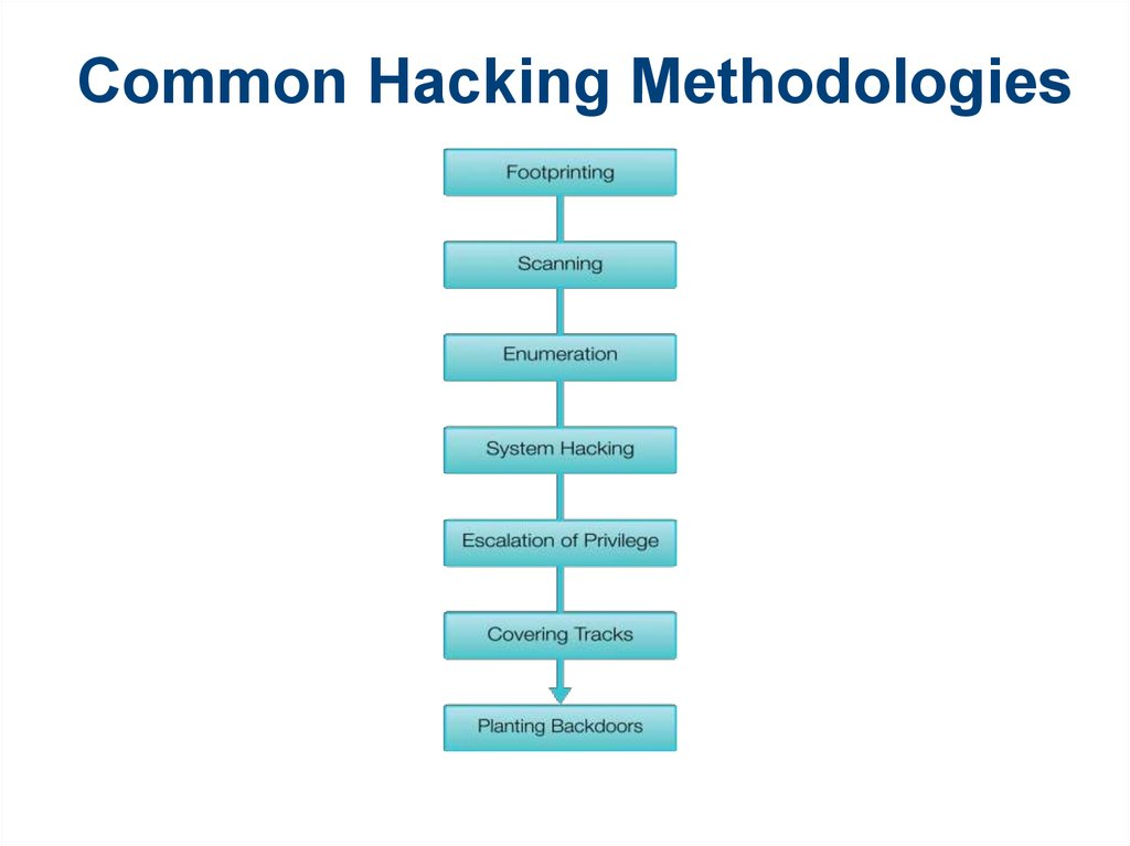 Common Hacking Methodologies