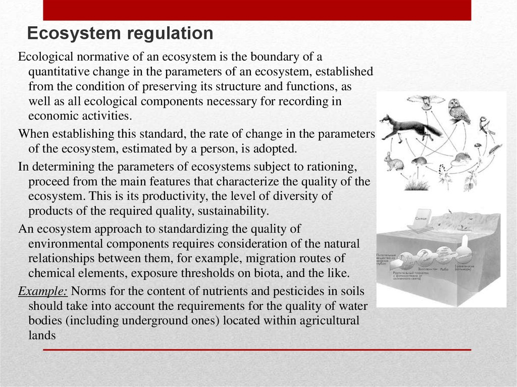 Ecosystem regulation