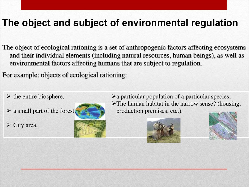 The object and subject of environmental regulation