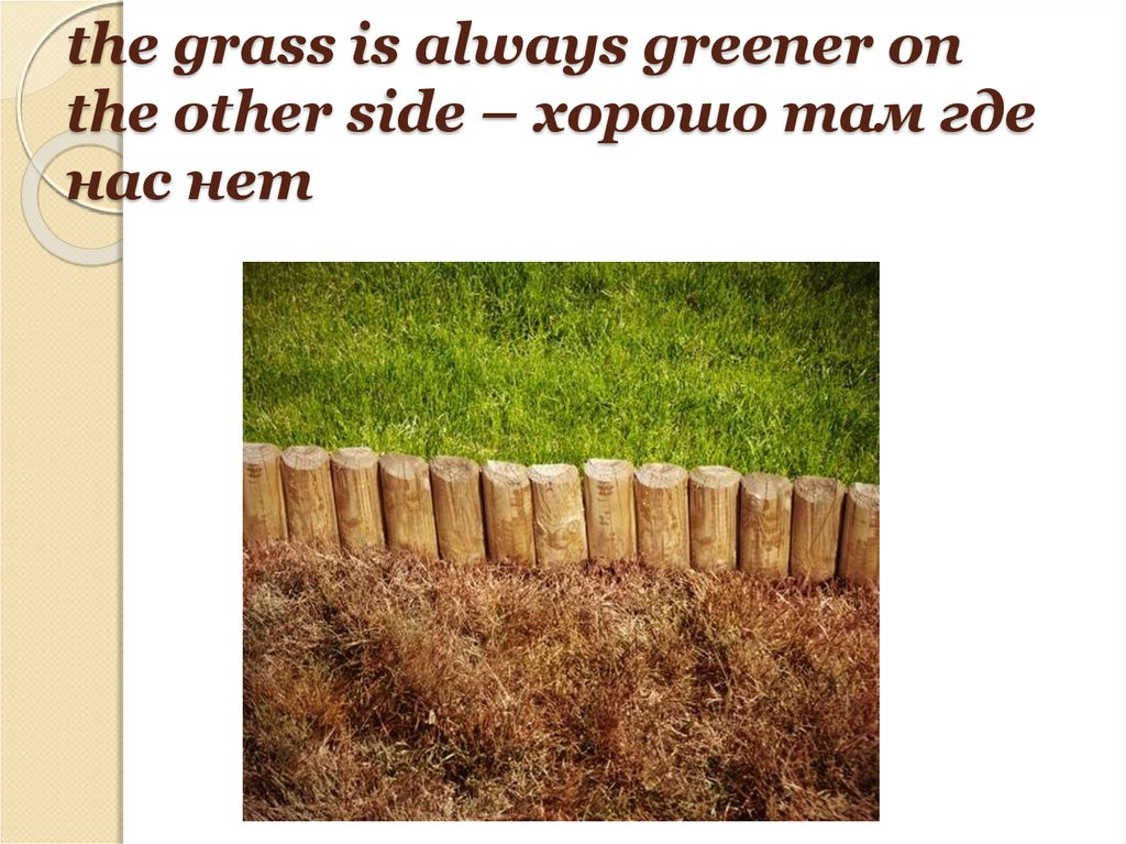 the grass is always greener on the other side – хорошо там где нас нет
