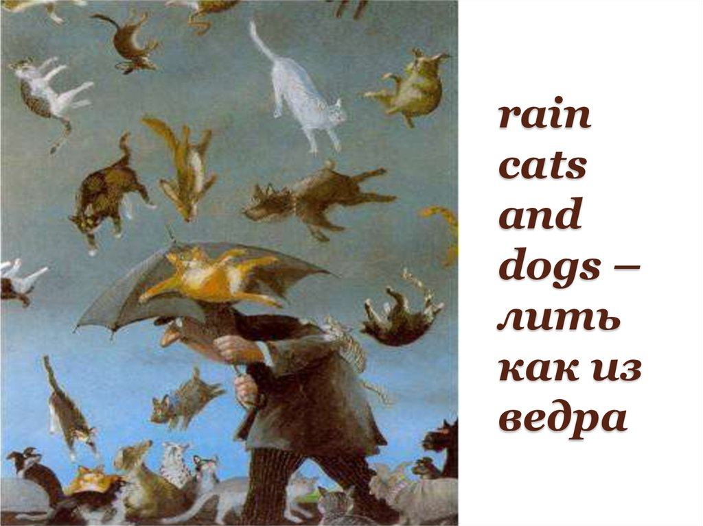 rain cats and dogs –лить как из ведра