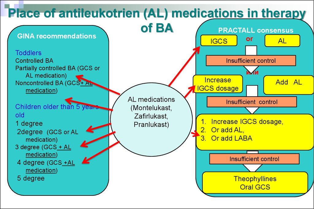 Place of antileukotrien (AL) medications in therapy of BA