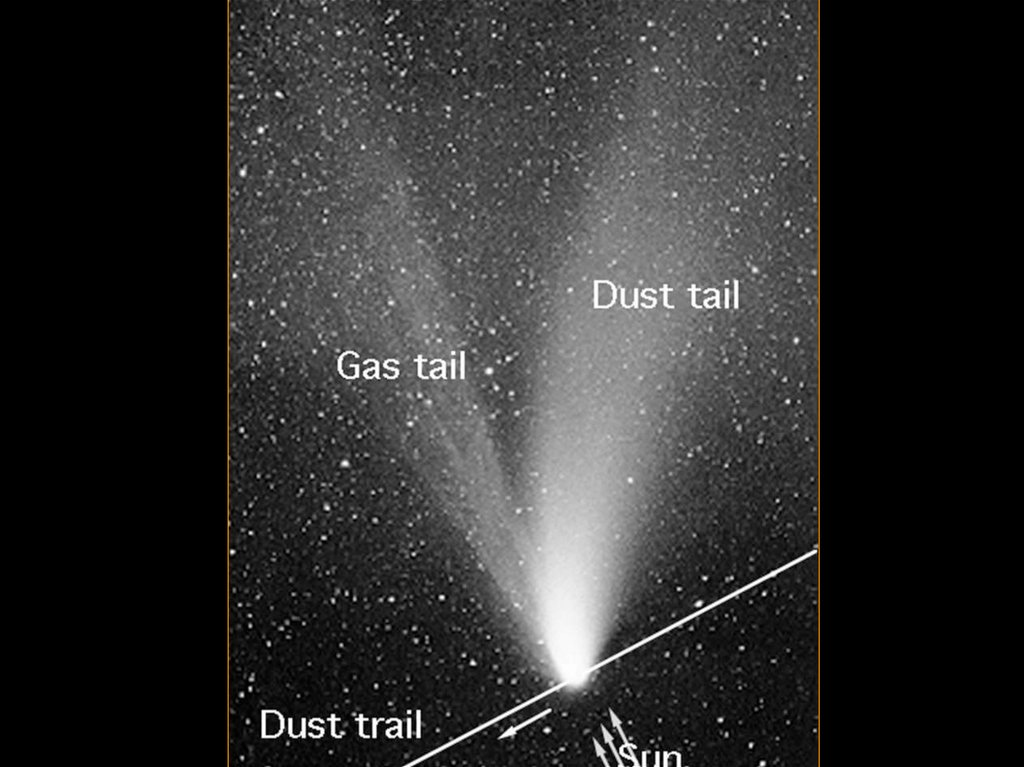 Components of Comets