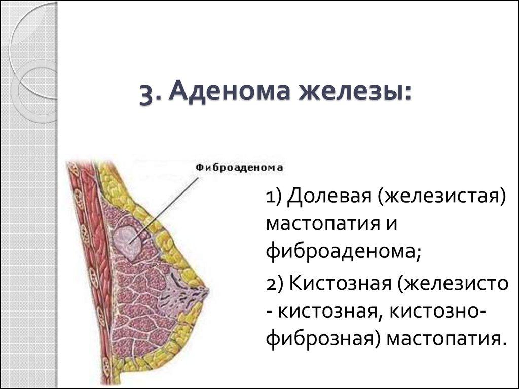 Соскоб из цервикального канала особенности процедуры