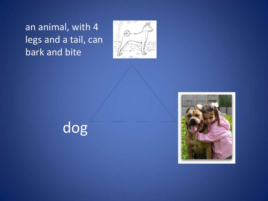an animal, with 4 legs and a tail, can bark and bite dog