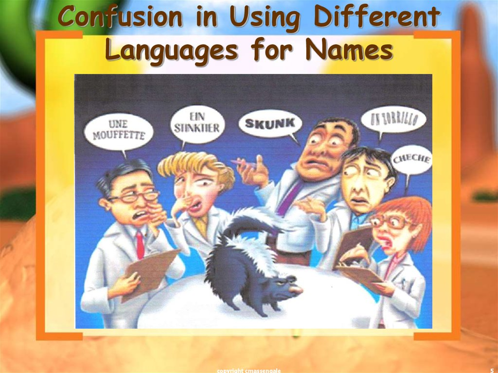Confusion in Using Different Languages for Names