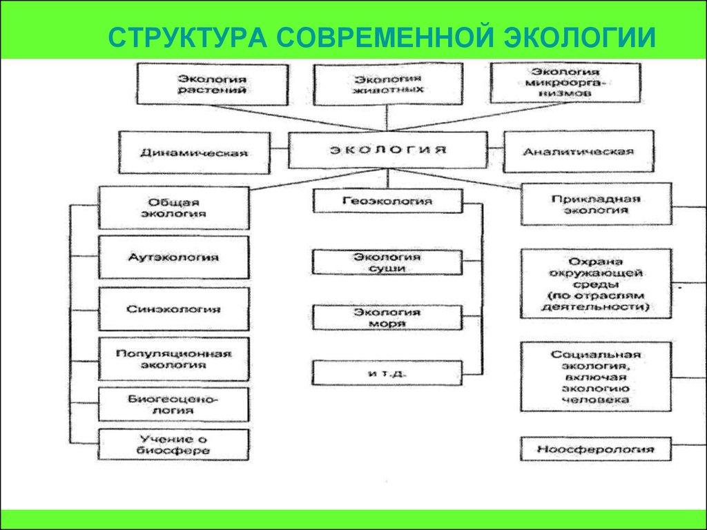 шпаргалка структура макроэкологии