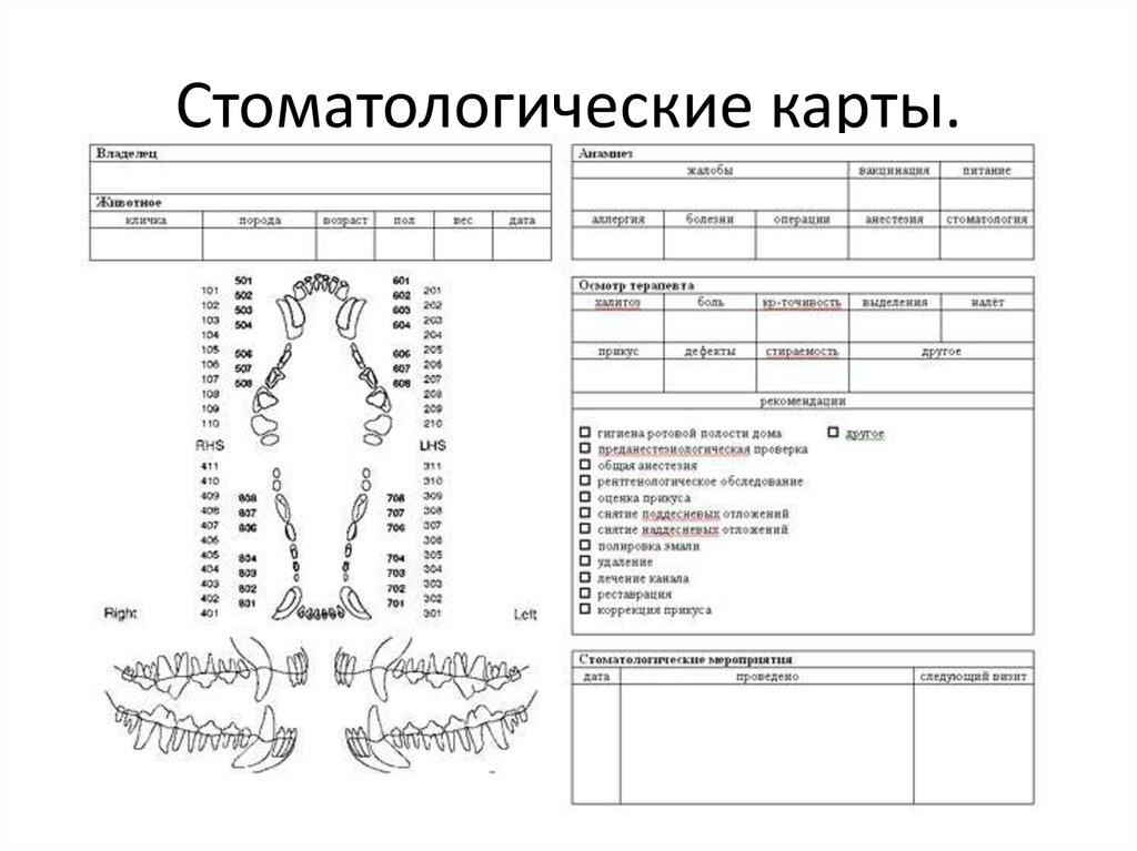 перевела карту амбулаторная карта 37 у стоматология образец вашем городе прямых