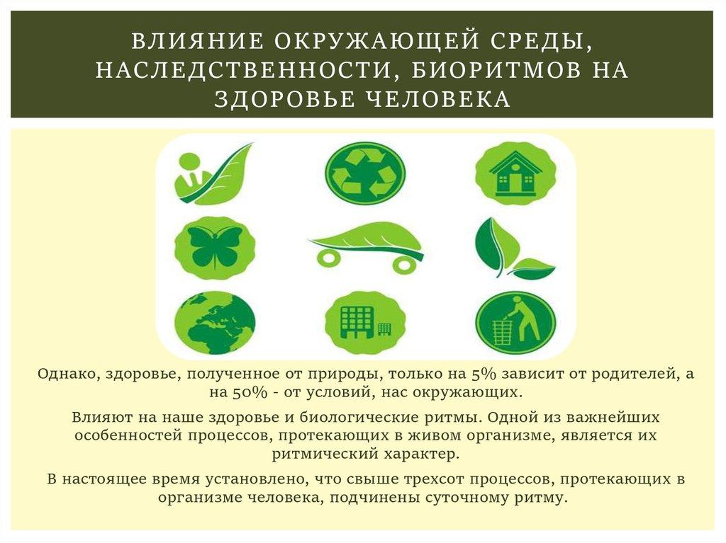институт здорового питания новослободская