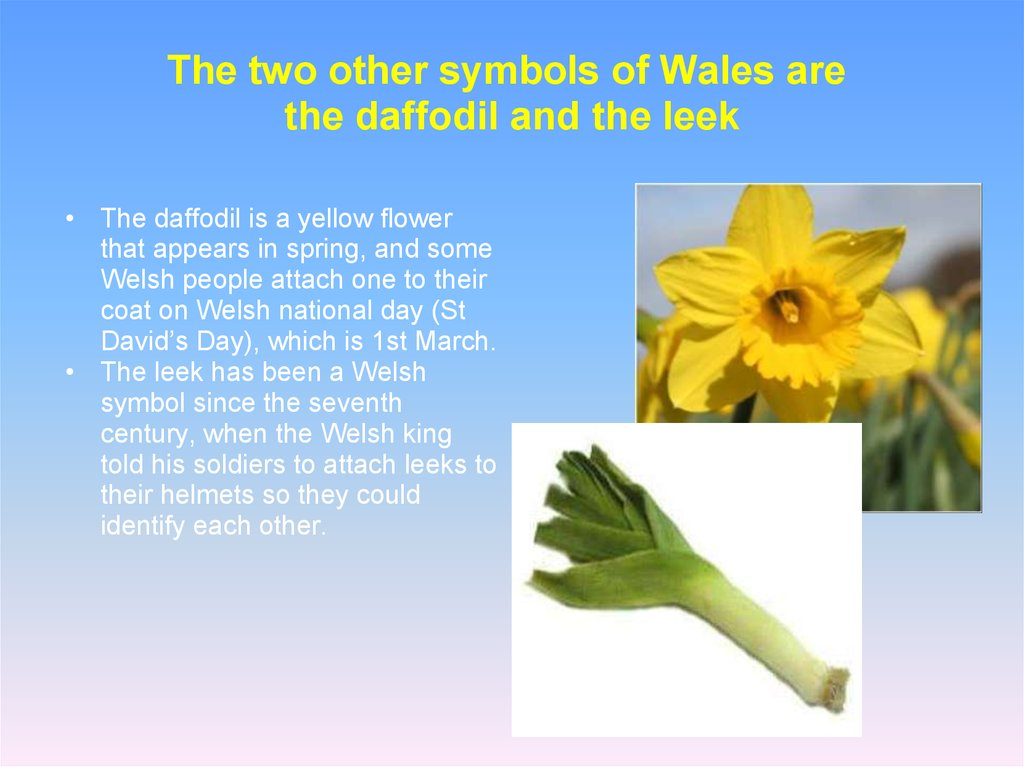 The two other symbols of Wales are  the daffodil and the leek