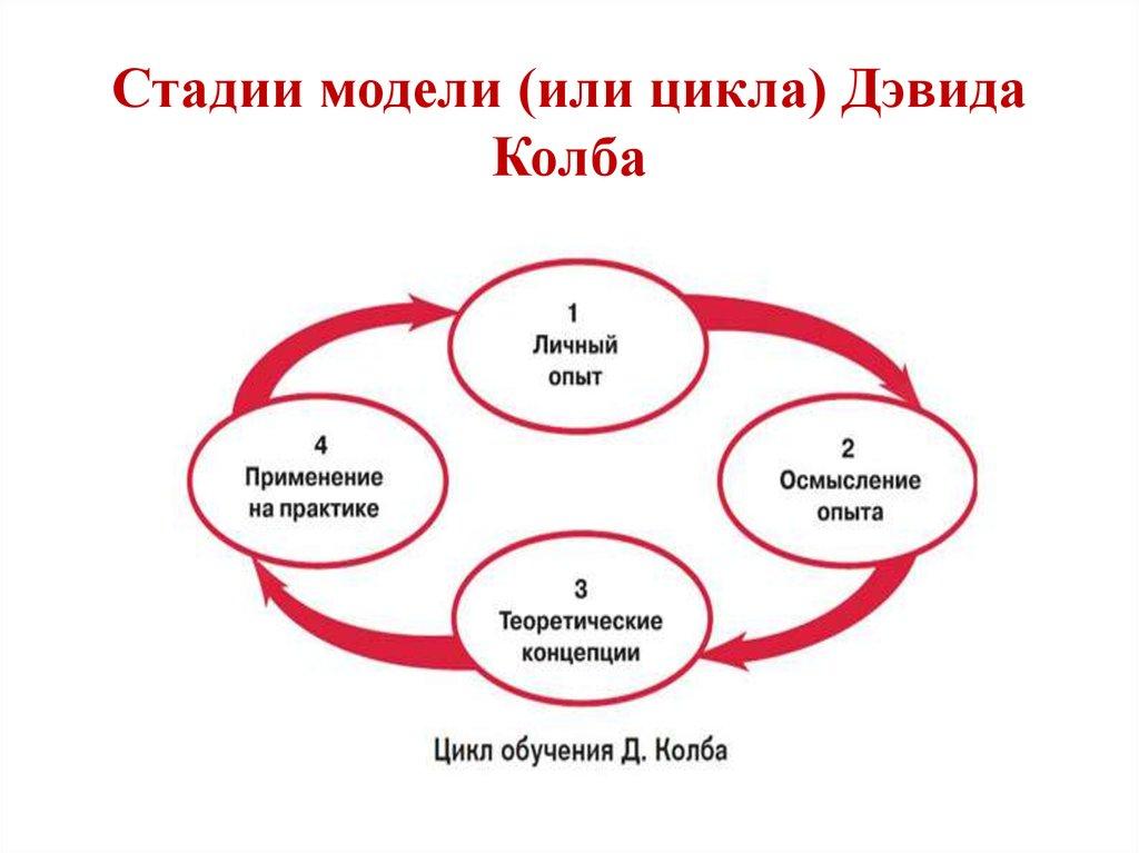 Цикл обучения колба картинки