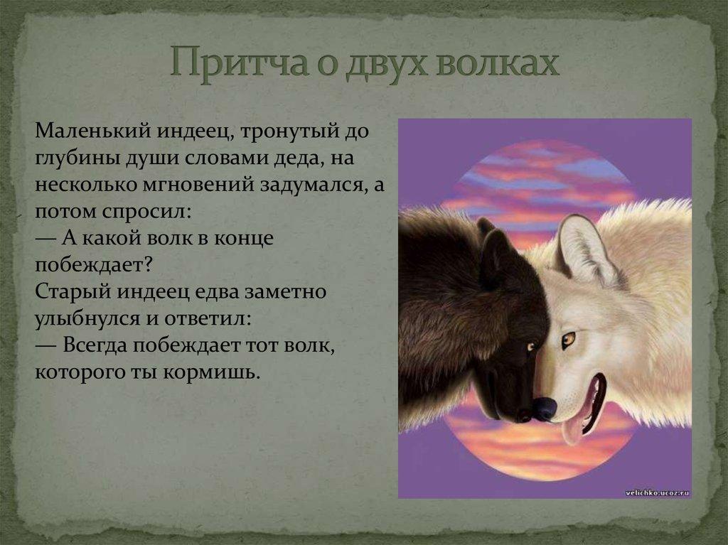 никто притча о волках в картинках индеец очень старая, про