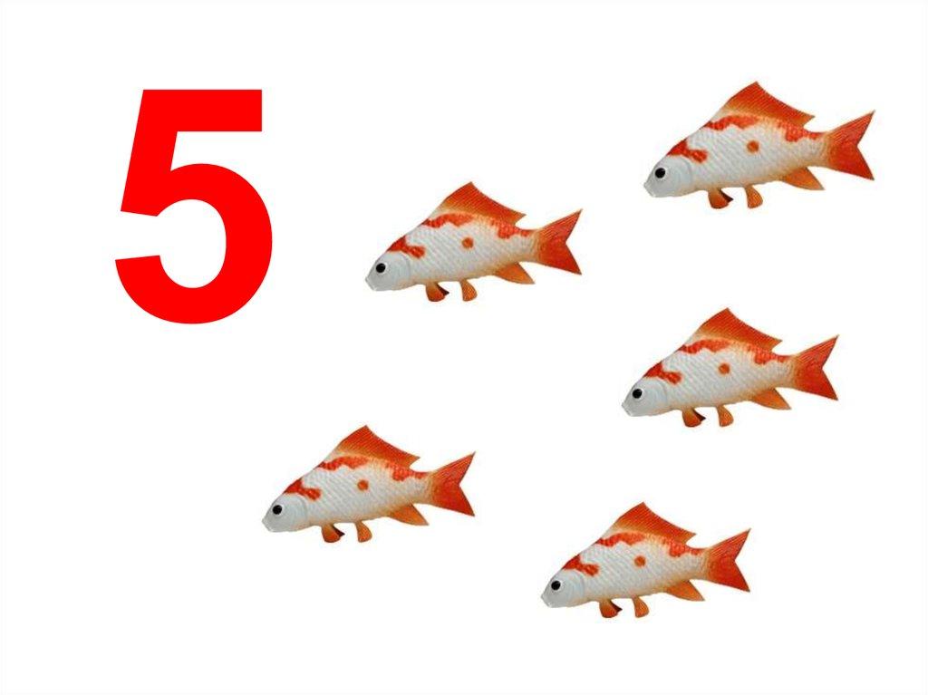 картинки предметов цифры четыре так