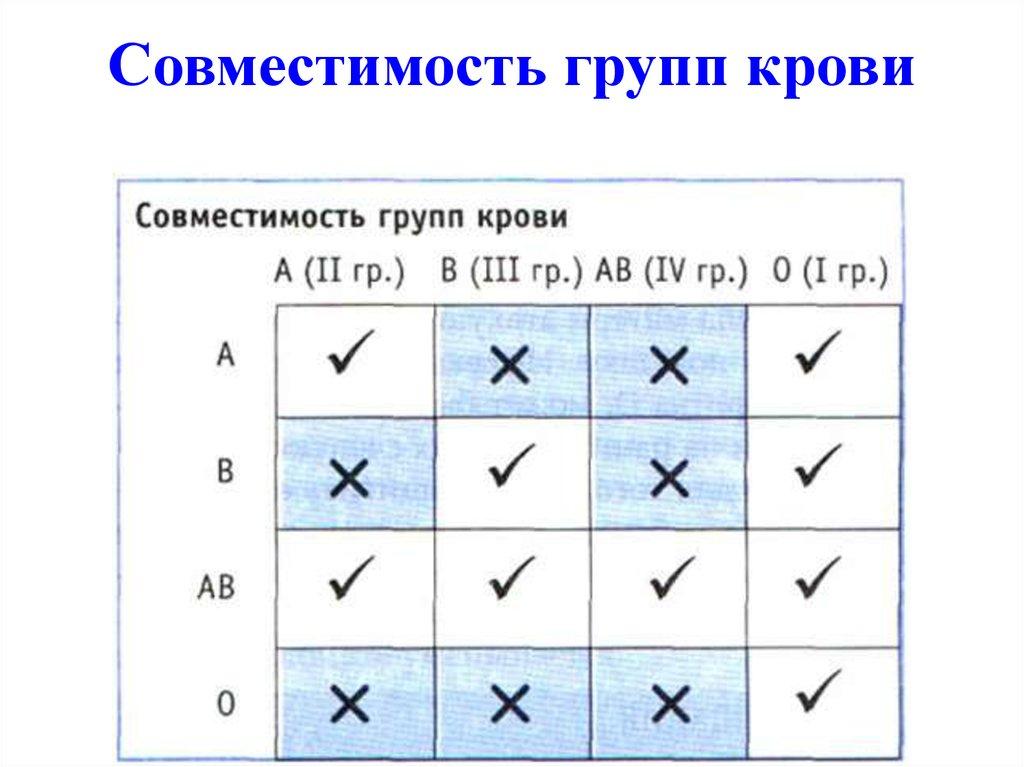 секс и совместимость крови группы b(2 b(2)- на