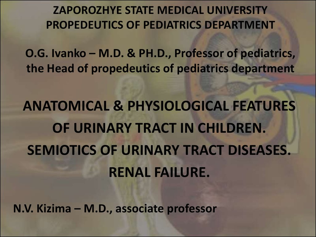 Anatomical & physiological features of urinary tract in children ...