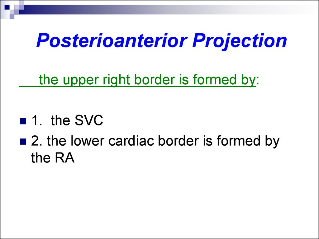 Posterioanterior Projection