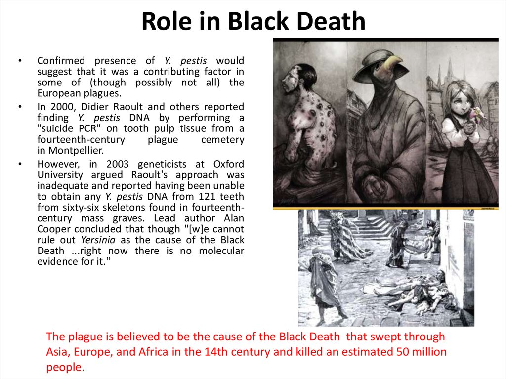 Role in Black Death