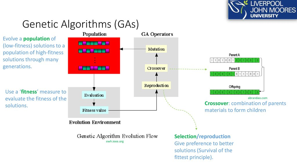 Genetic Algorithms (GAs)