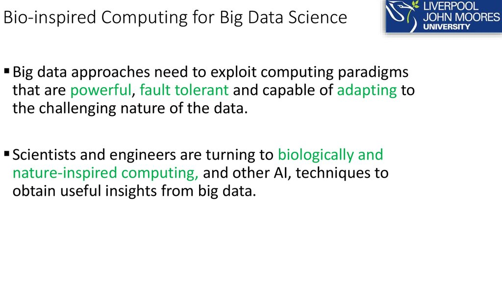 Bio-inspired Computing for Big Data Science