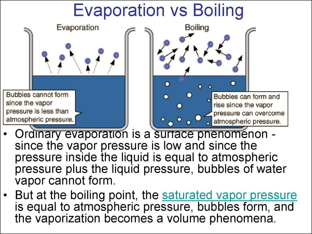 momentum and collisions Part ii: elastic collisions equipment: figure 2 illustrates the experimental method used for observation of elastic collisions in this part of the experiment, you'll observe the momenta (plural of momentum) of a pair of.